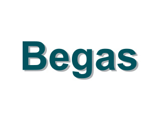 Begas Energy International